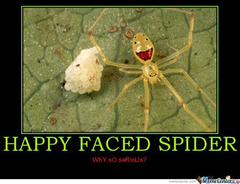 Memes About Spiders - happy spider by cebion meme center