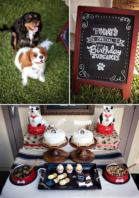 Birthday Surprises For Your Pet by Quot Barkery Bistro Quot Doggie Birthday Hostess With The