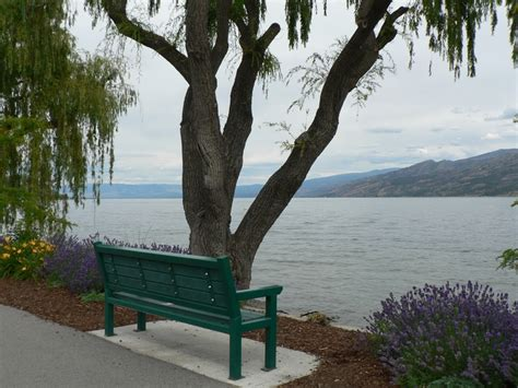 the bench kelowna 17 best images about benches overlooking water my