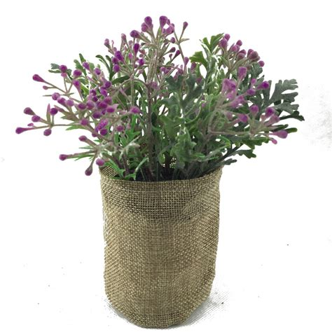 Decorative Indoor Plants by Buy Direct From China Wholesale Decorative Indoor Plants