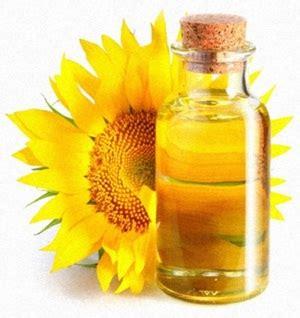 Minyak Bunga Matahari 3 manfaat dan penggunaan minyak bunga matahari