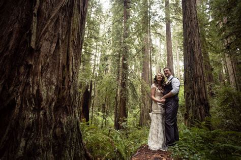 wedding venues in redwoods 2 cecilia and craig s california redwood forest wedding