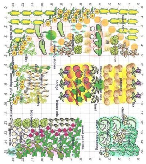 companion planting vegetable garden layout 25 best ideas about companion planting on