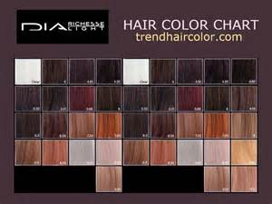 loreal color chart richesse hair color om hair