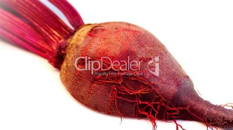 rote bette rote beete royalty free and stock footage