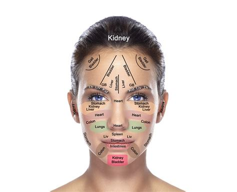 Liver Detox Acne Breakout by How To Determine The Health Of Your Kidneys Hormones And