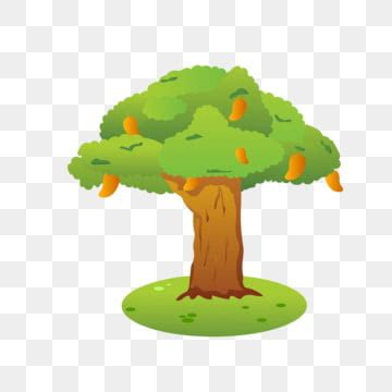 mango tree png images vector  psd files