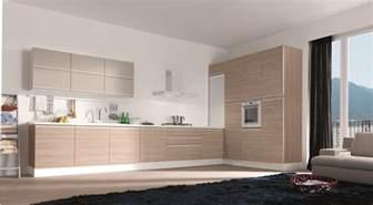 Modern Kitchen Cabinets Modern European Kitchen Design Photos Home Design And