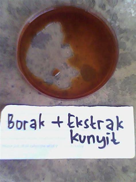 Asam Borat Boraks uji boraks pada makanan pdf todayoffshore30