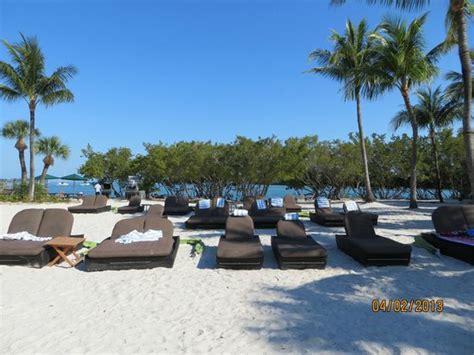 Pool Area Picture Of Hyatt Beach House Resort Key West Hyatt House Resort Key West