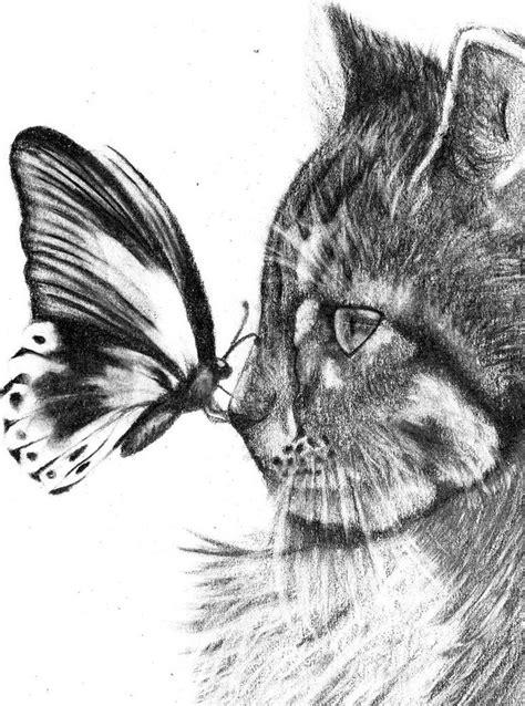 los mejores dibujos de animales los 10 mejores dibujos de gatos a l 225 piz