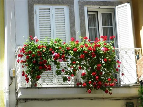beautiful balcony tips for a beautiful balcony