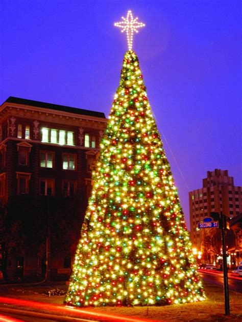 commercial outdoor tree lights commercial outdoor tree lights photo albums