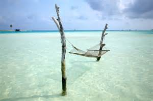 Hammock The Water picture of the day great place for a hammock 171 twistedsifter