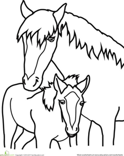 preschool baby animals coloring pages baby horse coloring pages printable only grig3 org
