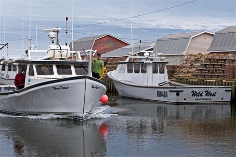 lobster boat docking a day at the tignish fisheries heather ogg photography pei