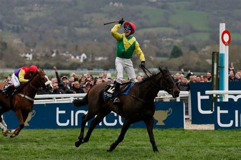 Cheltenham Gold Cup Sweepstake - cheltenham festival tips races and results mirror online