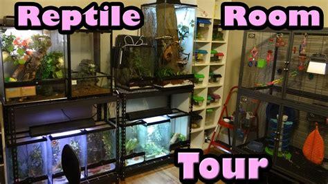 reptile room tour reptile room tour