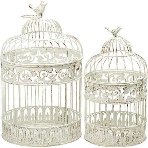 decorative bird cage hire cromer