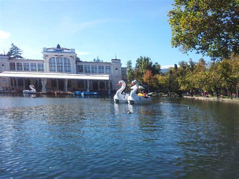 swan boats in central park the central park in cluj napoca transylvania hostel