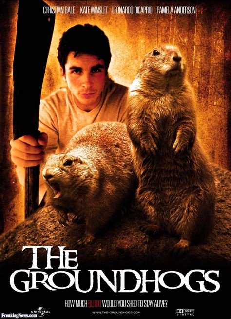 groundhog day killer groundhogs pictures freaking news