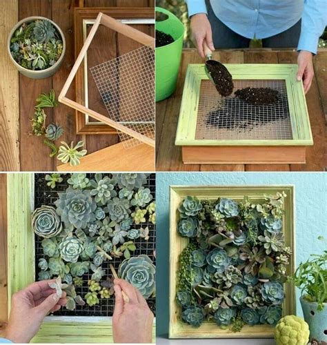 small vertical succulent garden for the home
