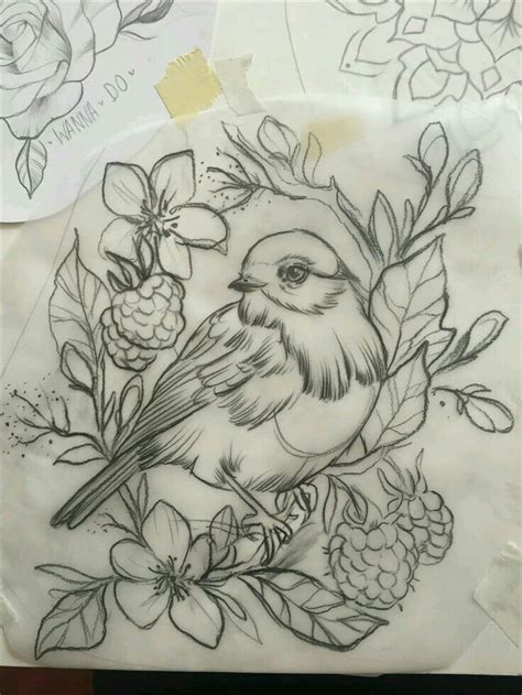 tattoo pencil drawings bird tattoo tattoo ideas pinterest bird tattoo and