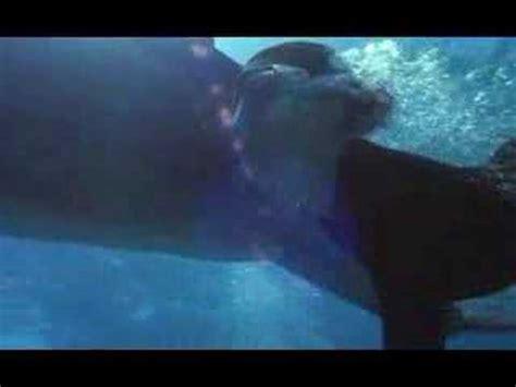 Film Gratis Zeus Si Roxane   kathleen quinlan dans zeus roxanne freediving youtube