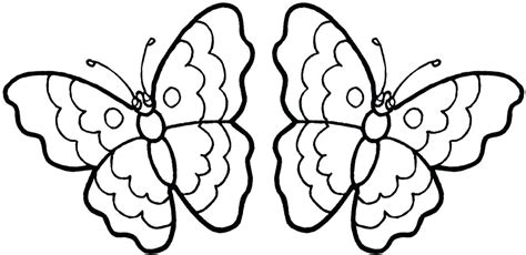 realistic butterfly coloring pages realistic butterfly coloring pages to print free printable