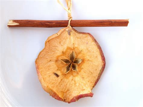handmade christmas ornaments dried apples and cinnamon