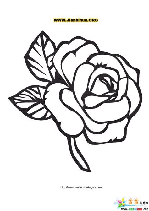 Bouquetbucket Bunga Mickeyminnie Size L 玫瑰花简笔画作品5张 第4张