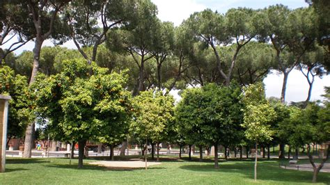serratura giardino degli aranci colle aventino la leggenda di parco savello newsgo