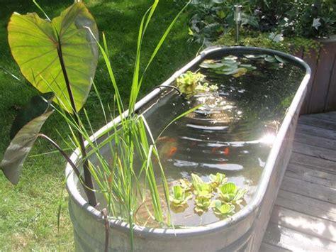 21 small garden backyard aquariums ideas that will beautify your green world