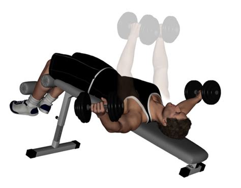 bench press flys decline bench dumbbell fly bodybuilding wizard