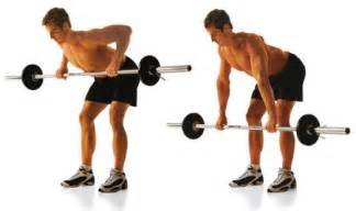 Bench Dumbbell Row Bent Row