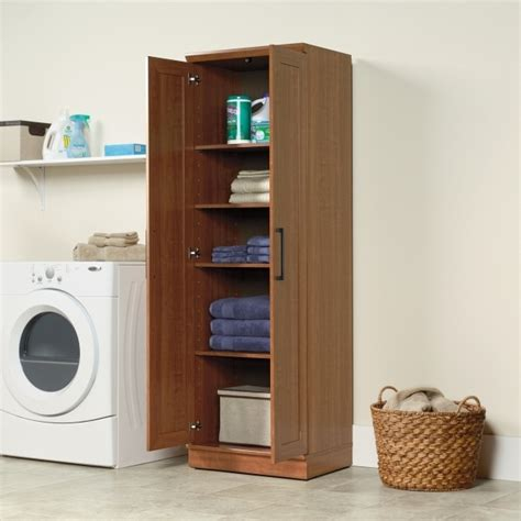 Big Lots Storage Cabinets by Big Lots Storage Cabinets Storage Designs