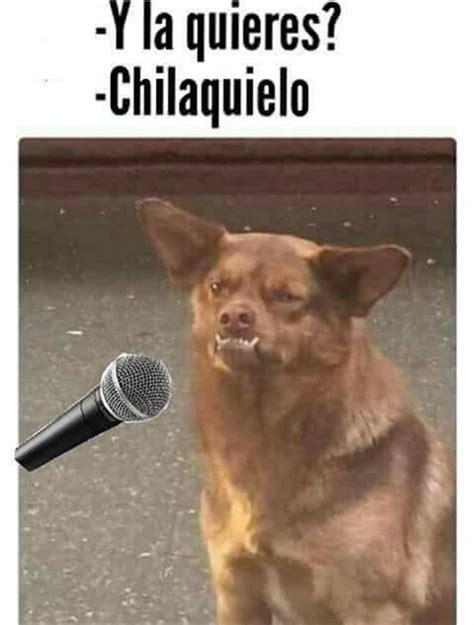Memes Perro Chilaquil