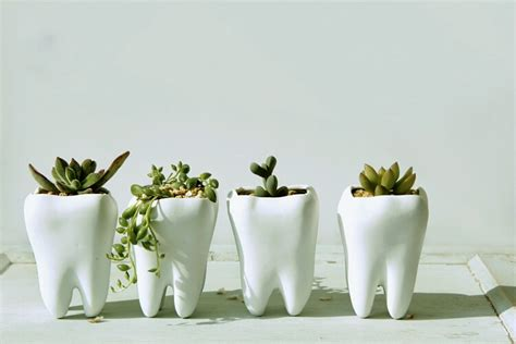 tooth shaped planter 50 unique pots planters you can buy right now