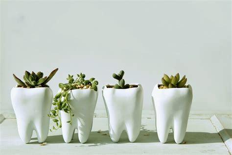 cute pots for plants 50 unique pots planters you can buy right now