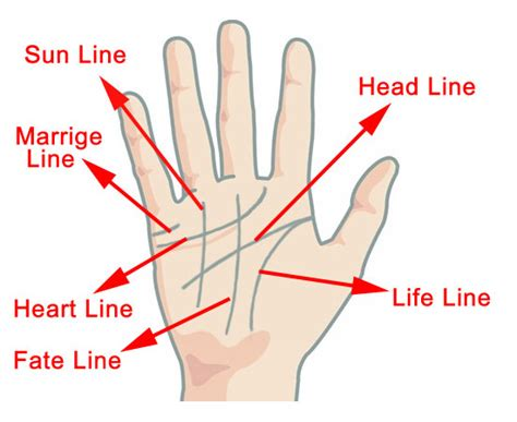 lifeline a parentã s guide to coping with a childã s serious or threatening issue books line palmistry the significance of this line in detail