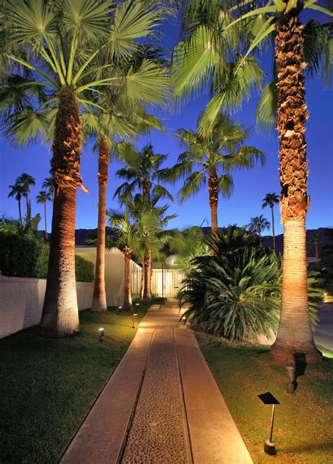 outdoor palm tree l post palm trees with intimate l andscape tropical and tropical