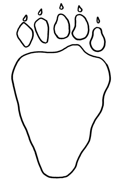 footprint clipart polar bear pencil and in color