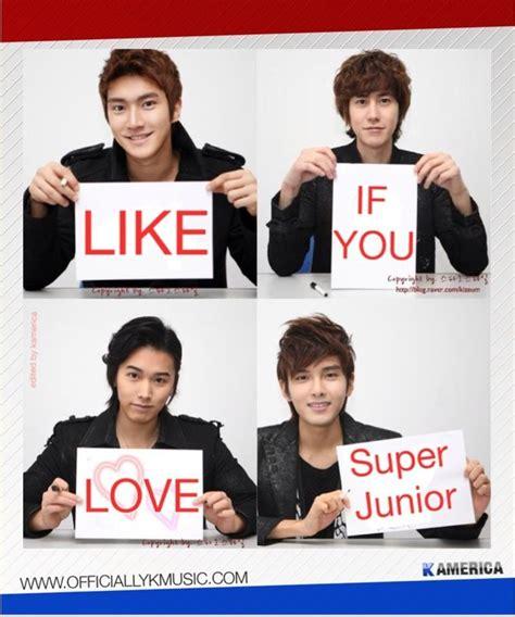 Super Junior Meme - 194 best engra 231 adas kpop funny images on pinterest