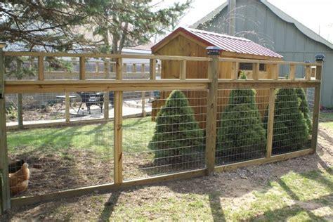 backyard fence chicken fencing ideas