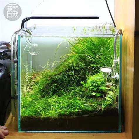 Pompa Aquarium Wasser aliexpress chihiros c serie ada stil anlage wachsen