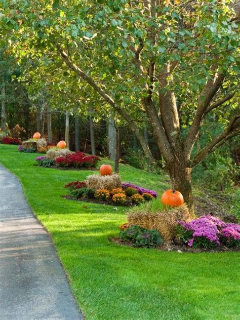 fall landscaping ideas 13 best fall landscaping ideas images on pinterest diy