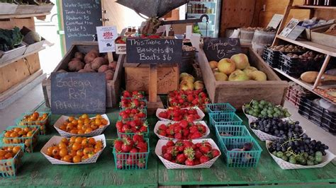 Philosophy Fruit Stand by Tierra Vegetables Sustainable Farming Sonoma County