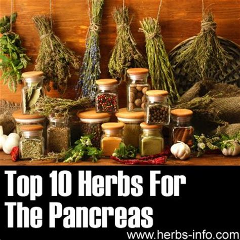 Herbs To Detox The Pancreas herbs for the pancreas dandelion root is my quot go to quot herb