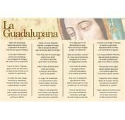La Guadalupana Poema  Virgen Peregrina De Familia