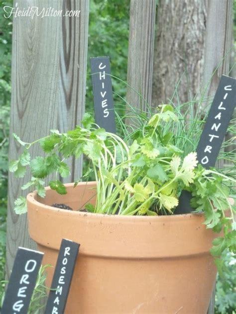 Diy Container Garden by Diy Herb Container Garden